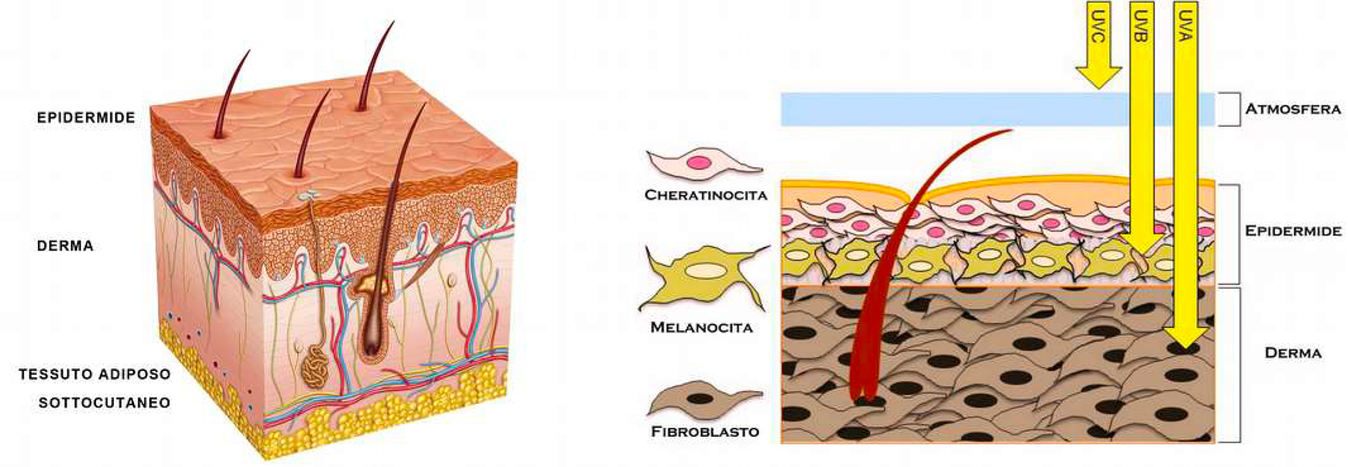 Pelle del viso macchiata a causa dell'esposizione solare