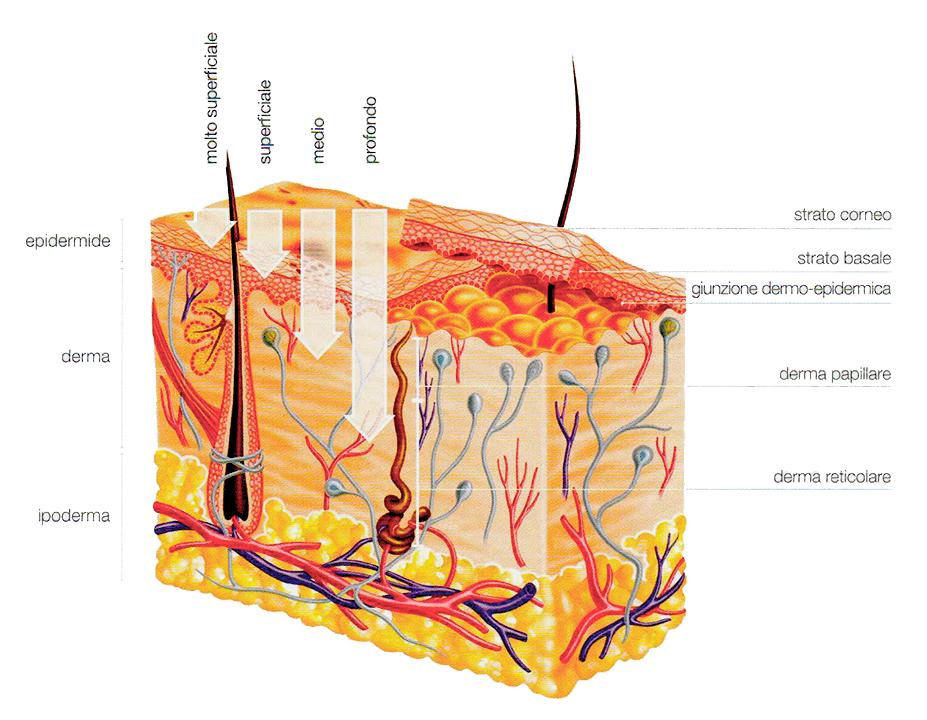 epidermide_peeling_clinica_pulvirenti_catanima_giarre